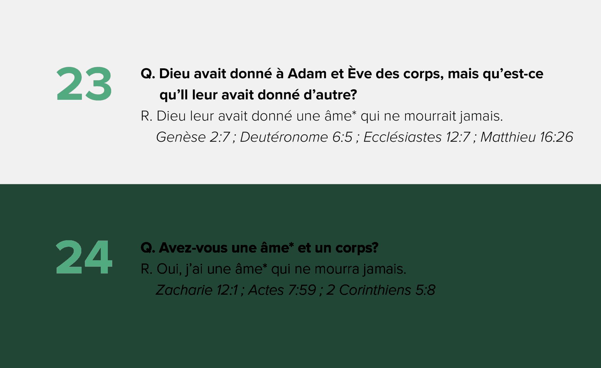 Q&A_23-24F